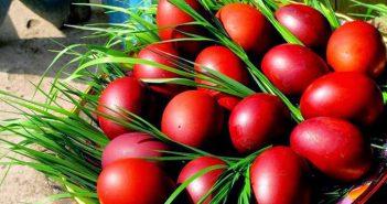 oua-rosii-iarba-indigo