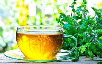 ceai plante medicinale ceaiuri